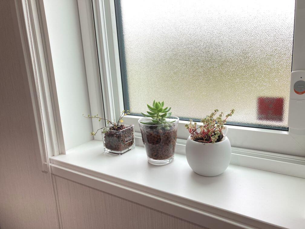 洗面所の開き窓